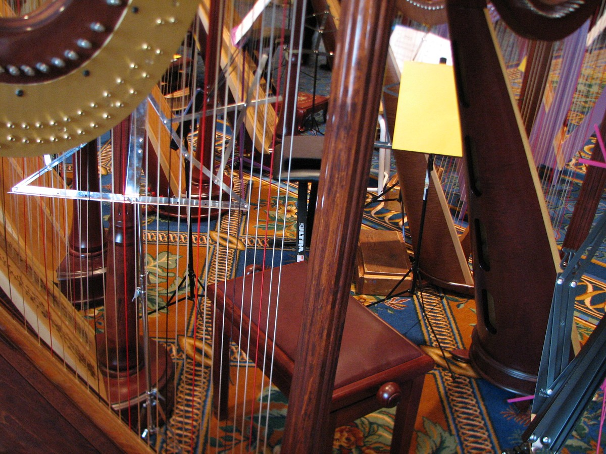 A forest of harps at the 2008 SAA Conference