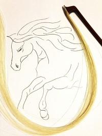 Horsehair Bow