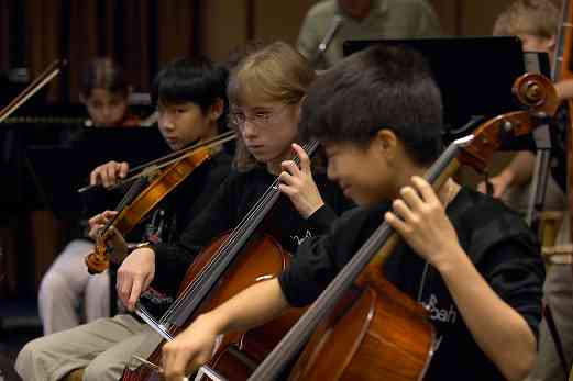 Cellists in the Shenandoah Valley Honors Orchestra at the 2006 SAA Conference