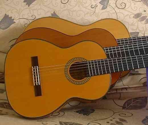 Guitars (Ann Arbor Suzuki Guitar Institute)