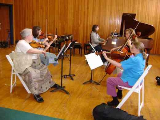 Chamber music at Suzuki by the Green