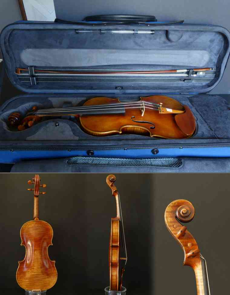 Combined Violin Image