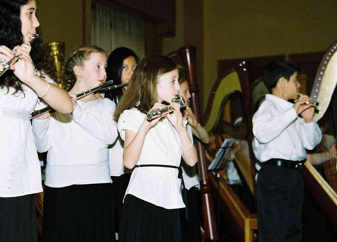 Flute and harp ensemble.