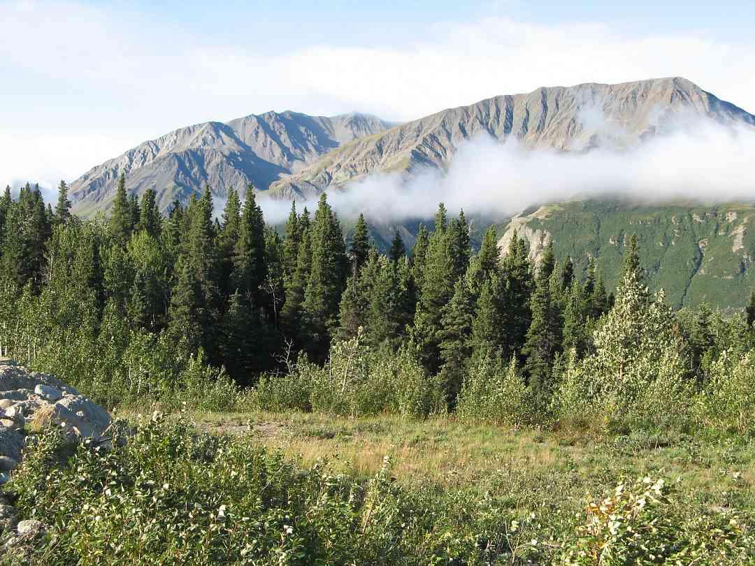 Fairbanks, Alaska (Fairbanks Suzuki Institute)