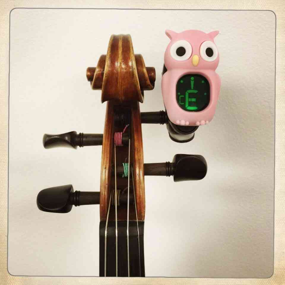 Violin Pink Owl