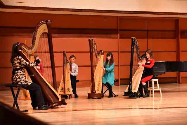 SAM Harp